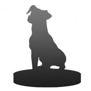 pet customised bobblehead